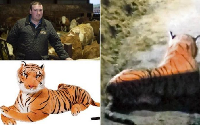"Tigger Bounces into a Cowshed – Armed standoff over cuddly toy – Scottish farmer Bruce Grubb caused an armed standoff after calling police to ""tackle a tiger on the loose""; it turned out to be a giant cuddly toy"