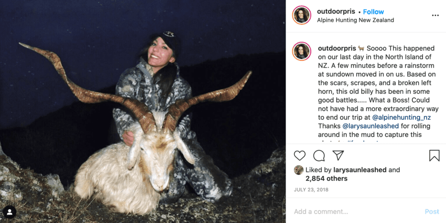 Monster of the Moment – Priscilla Magana – Bear butchering barbarian bitch and slutty sportswear seller Priscilla Magana should be banned from social media; this Trump supporting monster and bestie of Larysa Switlyk instead belongs in the nuthouse.